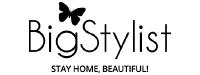 Big Stylist Logo